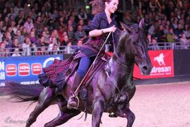 Equitana 2015, Pferdefotografie Hufspuren