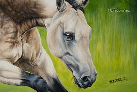 Pferdegemälde Buckskin Quarter Horse von Künstlerin Hanna Stemke von Hufspuren