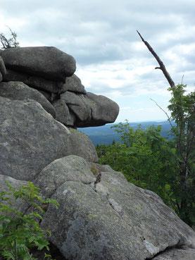 Wie ein Hundekopf geformter Felsen, im Hintergrund Harzpanorama