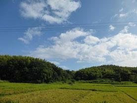 知多のお墓   2014/08/17