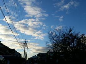 散歩道にて    2015/12/29