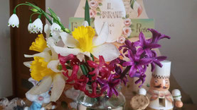 お庭のお花達