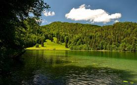 Bergsee , Bergwasser , See , Landschaft , Natur , Grün , Blauer Himmel , Wolken , Klares Wasser , Wasser, Badesee , Sommer , Nass , Wald , Mountains , Lake ,