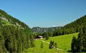 berghütte,alm,alpe,wanderweg,wandern,trekking,bergtour,wald,bergwald,alpen,tannheimer tal, wiese, idylle, blauer himmel, landschaft, panorama, mountains , alps, landscape , meadow, mountai hut, europe ,