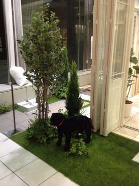 モデルルームフェイクグリーン植栽 ガーデン製作