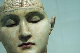 Rätsel halten unser Gehirn jung und vital