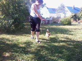 Hier übe ich grade im Garten mit Phieby