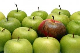 der faule Apfel muss raus