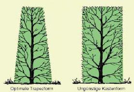 gartentipps fuer den monat kleingarten hangeweiherde