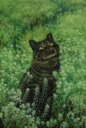 「猫道1」油彩 P6