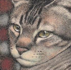 「ネコの肖像1」 50x50mm 細密ペン画