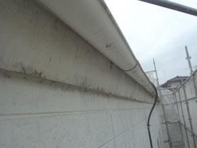 軒雨樋、破風板 塗装前