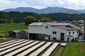 夏の寒天工場の風景