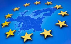 Stellungnahmen Europarat