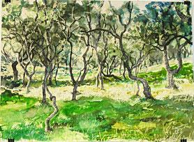 """Morrone Birkwood"", Ölkreide und Aquarell, 46 x 61 com, 2015"