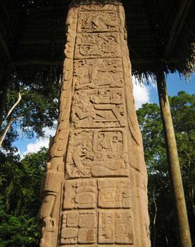 世界遺産「キリグアの遺跡公園と遺跡群(グアテマラ)」のステラD