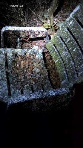 Kormoran Kot auf einem Anglersitz  unter dem Sc.hlafbaum