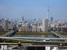 三通国際商事㈱のある江戸川区の風景