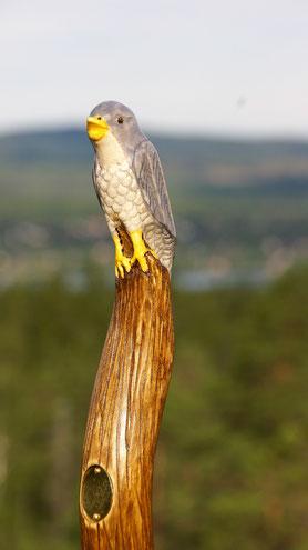 Wanderstab Holz mit Vogel