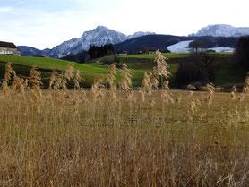 Blick Richtung Hochstaufen, Zwiesel und Fürmannalm vom Klosterwirt in Höglwörth