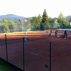 Tennis, Tennisplatz, Tennisplatzvermietung, Tennisstunden, Trainerstunden