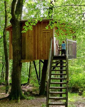 """Link zum privaten Blog """"Miniurlaub im Baumhaus"""" der Familie Maschmann, Sommer 2014."""