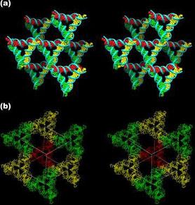 Images stéréoscopiques aux environs d'un triangle (a) et le rhomboèdre flanqué de huit des triangles (b)