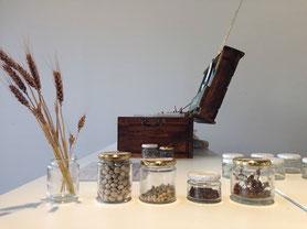 Share seeds イベント
