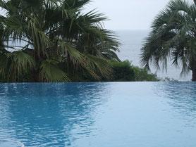 la mer les palmiers