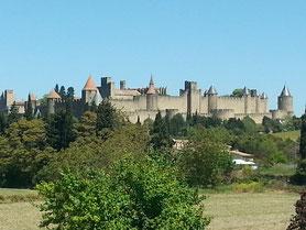 Cité-Carcassonne-Maison d'hôte-Au pied du Figuier