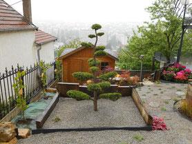 Taille d'arbuste Niwaki à Besançon (Doubs, 25)