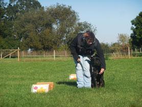 Hund Rally Obedience