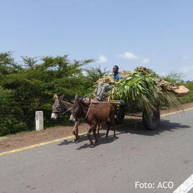 Das gegenwärtige Äthiopien auf einer Rundreise erleben