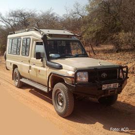 Lodgesafari auf einem Geländewagen in Tanzania
