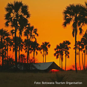 Sonnenuntergang auf Safari in Botswana