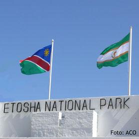 Namibia-Fahne im Etosha National Park