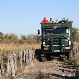 Botswana Campingsafaris - Allradfahrzeug mit Zelt