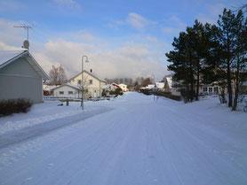 ニーショーピングの冬の風景