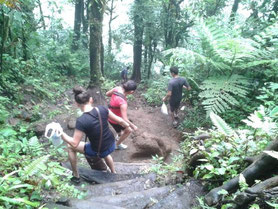 Cerro chato trails