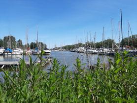 Hooksmeer, Nordsee, Wangerland