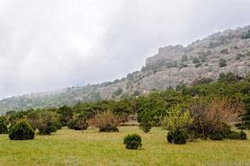 Караул Оба Райская Долина
