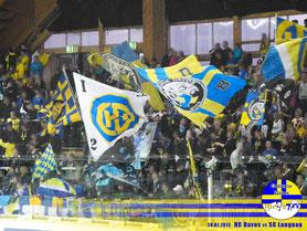 20.01.2013 HC Davos vs. SC Langnau 2:0