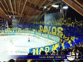 11.10.2014 HC Davos vs. SC Bern 6:3