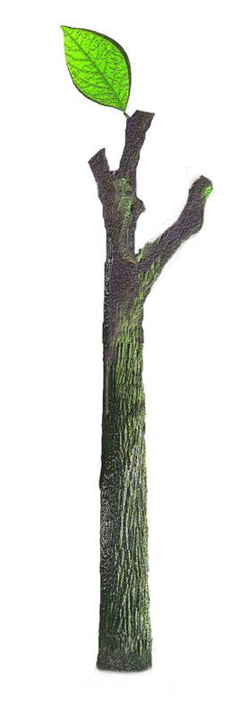 Stammbaum