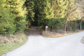 Zufahrt: links in den Wald abbiegen