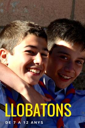 Llobatons, Scouts europa, Branca Groga