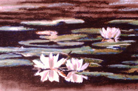 """Evening water lilies"" Pastell on Ingrés paper (1988)"