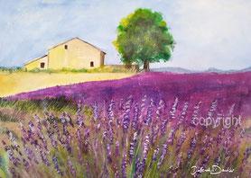 provence lavendel acryl