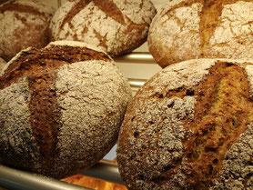 Brot & Brötchen - der tägliche Gaumenschmauss