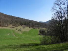 Naturschutzgebiet Asp in Vorfrühling